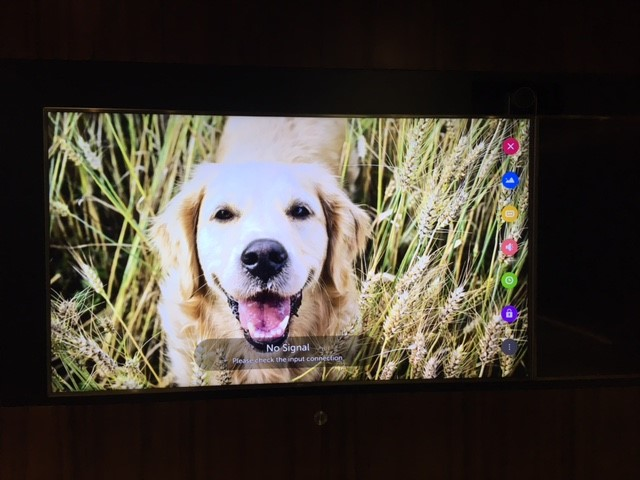 How Do I Customise the Screensaver? - LG webOS Smart TV Questions