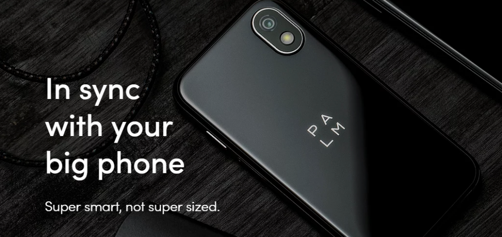 Palm Phone Companion